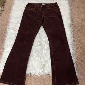 Cabi Burgundy Stretch Velvet Bootcut Pants